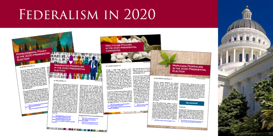 Federalism in 2020 Papers published